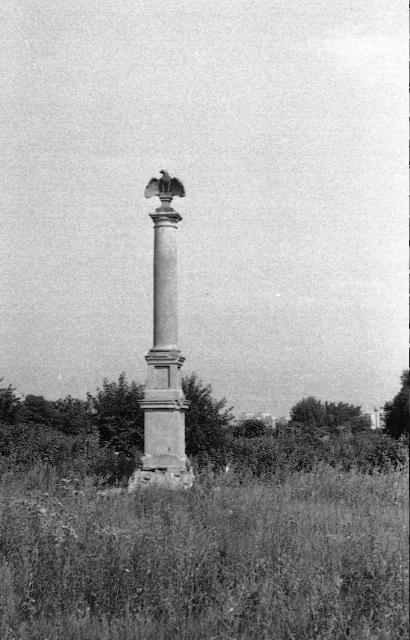 Orzeł z Bukowińskiej, 1991
