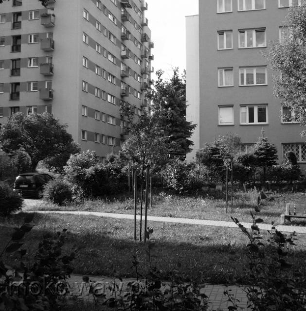 Konstancińska - 2015