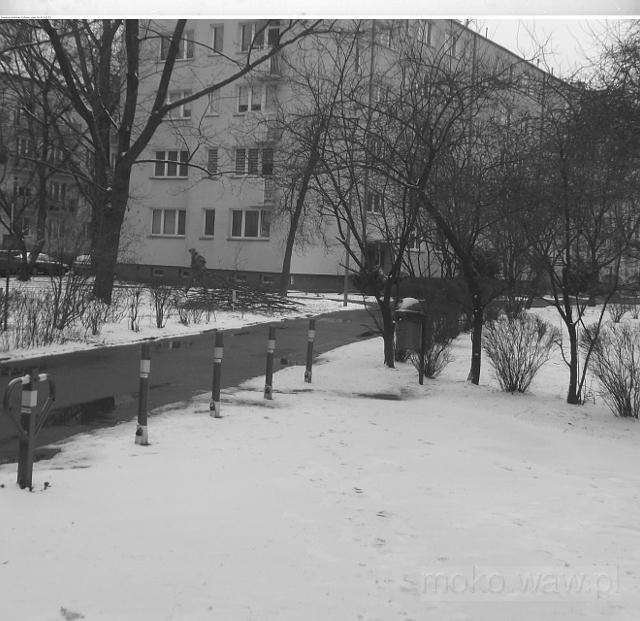 Zima na Stępińskiej, 2018