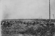 Wiertnicza, 1915