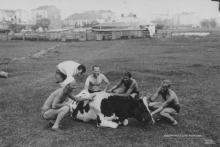 Balaton, 1943
