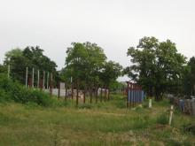 Al. Niepodległości, Ksawerów, 2005